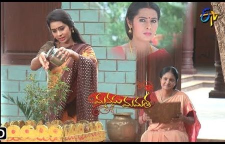 Manusu Mamatha Daily Serial